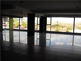 Oficina en alquiler en Sant Cugat del Vallès - 367146398