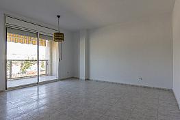 Piso en alquiler en calle Industria, Mas d´en gual en Vendrell, El - 318472467