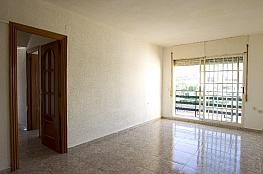 Piso en alquiler en calle Calasseit, Sant Carles de la Ràpita - 348622979