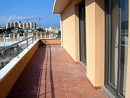 Foto_01 - Piso en venta en Puerto Marina en Benalmádena - 296592212
