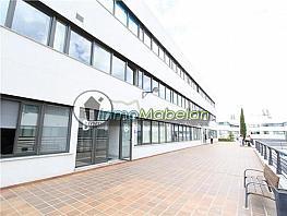 Oficina en alquiler en El Pinar-Punta Galea en Rozas de Madrid (Las) - 372296888