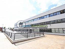 Oficina en alquiler en El Pinar-Punta Galea en Rozas de Madrid (Las) - 397938816