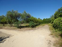 Land for sale in calle , Espartinas - 286920679