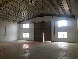 Foto - Nave industrial en alquiler en calle Pi Los Villares, Villares de la Reina - 359663116