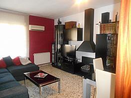 Salón - Piso en venta en calle Costa de Magraners, Els Magraners en Lleida - 315296406