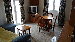 Salón - Piso en alquiler en calle Oliver, Secà de sant Pere en Lleida - 337172738