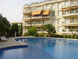 Apartamento en alquiler en calle Punta Prima, S´agaro - 348318988