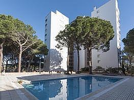 Imagen del inmueble - Apartamento en venta en Pals - 373710943