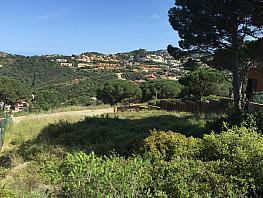Terreny en venda carrer Es Valls, Begur - 364797187