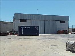 Nave 1 - Nave industrial en venta en calle Parcela Z Sector Sp F, Médano, El - 291063207