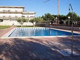 Foto - Piso en venta en Alcanar - 184635705
