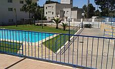 Foto - Bajo en venta en Alcanar - 212290871