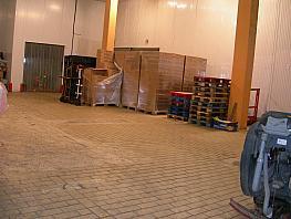 Nave industrial en alquiler en calle Empordà, Sant Quirze del Vallès - 260965347