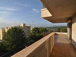 Foto - Piso en alquiler en calle Portals Nous, Calvià - 233421763