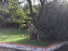 Jardín - Chalet en venta en calle De la Mola, Sant Llorenç Savall - 157892734