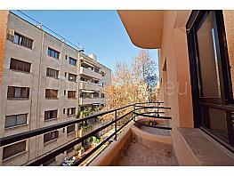 Piso en alquiler en calle Guillem Costa, Son Armadams en Palma de Mallorca - 374579226