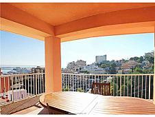 Apartamentos Palma de Mallorca, El Terreno