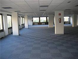 Oficina en alquiler en calle Condesa de Venadito, Ciudad lineal en Madrid - 327902216
