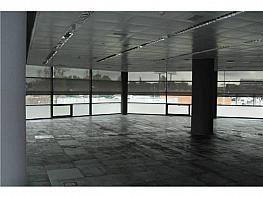 Oficina en alquiler en calle Musgo, Moncloa-Aravaca en Madrid - 330352586