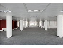 Oficina en alquiler en calle Estrecho de Mesina, Hortaleza en Madrid - 333438434