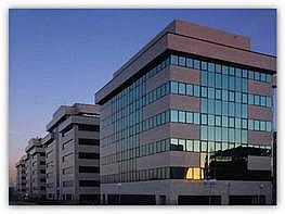 Oficina en alquiler en calle Sur del Aeropuerto de Barajas, Barajas en Madrid - 345069480
