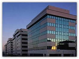 Oficina en alquiler en calle Sur del Aeropuerto de Barajas, Barajas en Madrid - 345069537