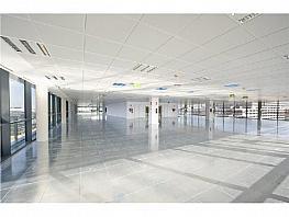 Oficina en alquiler en calle Manoteras, Hortaleza en Madrid - 368808049