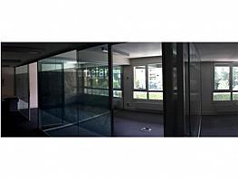 Oficina en alquiler en calle Serrano, Salamanca en Madrid - 377750487