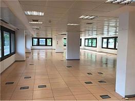 Oficina en alquiler en calle Orense, Tetuán en Madrid - 377750814