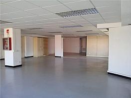 Oficina en alquiler en calle Maria Tubau, Las Tablas en Madrid - 391294774