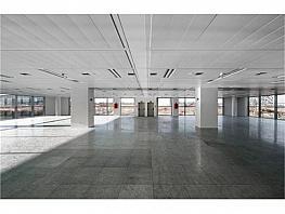Oficina en alquiler en calle Quintanapalla, Fuencarral-el pardo en Madrid - 381548369