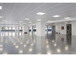 Oficina en alquiler en calle Manoteras, Sanchinarro en Madrid - 387631633