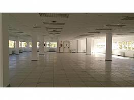 Oficina en alquiler en calle Manoteras, Sanchinarro en Madrid - 391293337