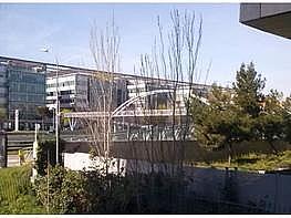 Oficina en alquiler en calle Sur del Aeropuerto de Barajas, Barajas en Madrid - 330353840