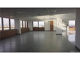 Oficina en alquiler en calle Rosario Pino, Tetuán en Madrid - 355865017
