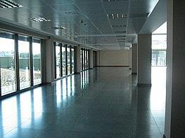 - Oficina en alquiler en Sant Cugat del Vallès - 237640845