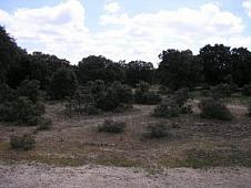 Terreno en venta en paseo De Platanos, Velayos - 13771007