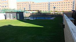 Jardín - Piso en alquiler en calle Francia, Portillejo - Valdegastea en Logroño - 331309775