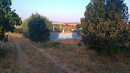 Parcelle de vente à carretera Camino Viejo Madridburgos, Molar (El) - 300542491