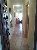 Pasillo - Apartamento en venta en edificio Guardamar, Urb. Pinomar en Guardamar del Segura - 314535839