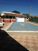 Piscina - Chalet en alquiler en Boqueres en San Vicente del Raspeig/Sant Vicent del Raspeig - 329110110