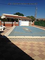Piscina - Piso en alquiler en Boqueres en San Vicente del Raspeig/Sant Vicent del Raspeig - 356630681