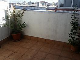 Terraza - Piso en venta en calle Mila, Sant Crist en Badalona - 326665277
