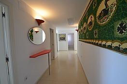 Foto - Apartamento en alquiler en calle Marina Alta, Poniente en Benidorm - 370587330