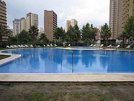 Foto - Apartamento en alquiler en calle Lerida, Levante en Benidorm - 386990184