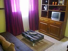 Foto - Apartamento en alquiler en calle Alameda, Zona centro en Benidorm - 196292425