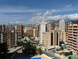 Foto - Apartamento en alquiler en calle Montecarlo, Rincon de Loix en Benidorm - 196292440