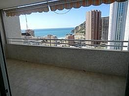 Foto - Apartamento en alquiler en calle Marina Baixa, Finestrat - 196293523