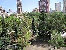 Foto - Apartamento en venta en calle Laigüera, Zona centro en Benidorm - 211864094