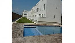 Piso - Piso en alquiler opción compra en calle Avenida Mediterráneo, Benicarló - 304283419